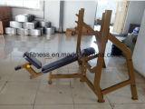 Memoria olimpica del banco di forma fisica della macchina commerciale della strumentazione