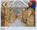 Pegamento WBP de la madera contrachapada del álamo F/B Bingtangor de la base