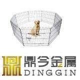 Beweglicher Haus-HundePlaypen im Freien