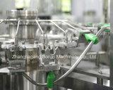 De volledige Installatie van de Bottelmachine van het Mineraalwater