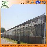 自動制御システムが付いているよい価格の野菜か花または農場または庭のガラス温室