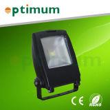 Jardin lumière LED 10W/ 10W Lumière LED de plein air