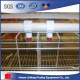Sistema automático de la jaula del equipo de las aves de corral del pollo para el pollo de la parrilla de la capa