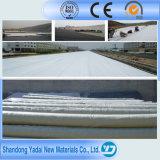 Doublure imperméable à l'eau de Geomembrane de membrane de HDPE avec la pisciculture