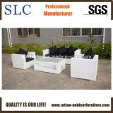 Wicker напольная мебель/мебель софы новой софы ротанга конструкции установленная (SC-B8219)