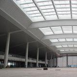 Plafond van het Schot van de Uitdrijving van het nieuwe Product het Materiële met Modern Ontwerp
