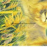 100%Polyester золотистый львев Pigment&Disperse напечатал ткань для комплекта постельных принадлежностей
