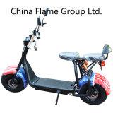 1000W Scooter de movilidad eléctrica con F/R de golpes, 2 asientos 60V/30Ah
