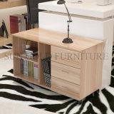 Factory Direct le dépôt de bureau en bois d'étagère avec tiroir du Cabinet (SZ-FCT625)