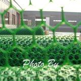 بلاستيكيّة دواجن انبثق تشبيك شبكة بلاستيكيّة