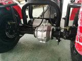 Motorino elettrico originale di Trike Harley Citycoco della fabbrica con la batteria smontabile