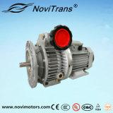 Motores flexibles trifásicos del motor síncrono del imán permanente con el gobernador de velocidad (YFM-80/G)