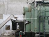 Caldeira a vapor de carvão de fábrica