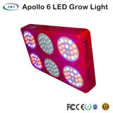 Volles Spektrum Apollo 6 LED wachsen für Innenbearbeitung hell