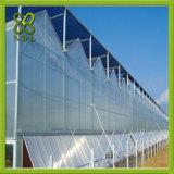 Estufa do grande tamanho e garantia de vidro da qualidade