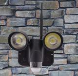 La macchina fotografica senza fili nuovo 720p del CCTV di WiFi di visione notturna impermeabilizza 5.0MP la macchina fotografica dell'indicatore luminoso di obbligazione del sensore di movimento PIR