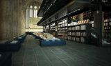 Mattonelle di ceramica lustrate stile concreto del cemento per il pavimento e la parete (FN05)