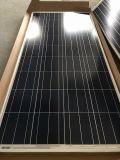 Módulos solares policristalinos alemães de Quality100W para a potência verde