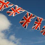 Персонализированный высоким качеством шнур ткани страны Flags печатание