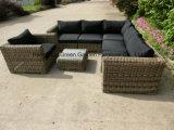 Il sofà di vimini rotondo modulare esterno ha impostato con il tavolino da salotto