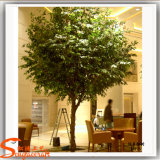 Вал Ficus стеклоткани искусственний для украшения трактира