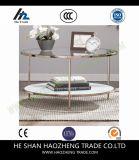Hzct035 테라스 커피용 탁자는 가구를 금속을 붙인다