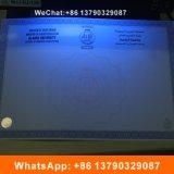 Подгонянное водяной знак и UV незримый сертификат обеспеченностью Hologram