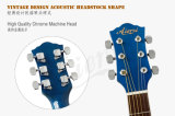 Цветастый 41 дюйм - гитара студента оптовой продажи высокого качества акустическая (SG028CA)