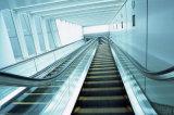 Vvvf Laufwerk-Innenrolltreppe für Supermarkt mit Geschwindigkeit 0.5m/S