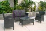 Rattan/insieme esterno di vimini della mobilia del patio del giardino