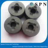 Imán anisotrópico de /Magnet de la ferrita permanente/base de cerámica