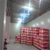 Internationale Kühlkette-Kaltlagerung für Nahrungsmitteldas neue Halten
