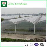中国の熱い販売の農業の耕作のための経済的なフィルムの温室