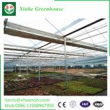 ハイテクノロジーの光起電農業の温室