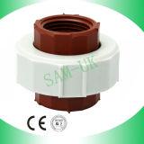Formato 1/2 '' - 2 '' unione standard sana del filetto di tubo delle BS pp