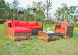 Sofa chaud de jardin de vente pour 2016 osiers/meubles extérieurs de rotin
