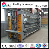 Hot of halls! Galvanized 3 animal Battery Layer Chicken Cage for halls