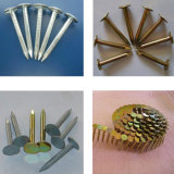 Лак для ногтей машины/стальной проволоки лак для ногтей бумагоделательной машины производственной линии для кровли лак для ногтей/поддоне лак для ногтей/конкретные лак для ногтей/ногтевой пластины из нержавеющей стали