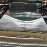 中国の製造者100ミクロンのステンレス鋼の金網
