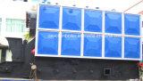 Combustible Sólido múltiples Packaged caldera de vapor industrial