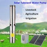 Pompa ad acqua solare solare del sistema CC di pompaggio dell'acqua