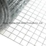 Сварной проволочной сетки оцинкованный/PVC сетку крыши из нержавеющей стали с покрытием
