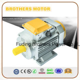 Series Asynchronous Motor氏の三相誘導の電動機のリスケージモーター
