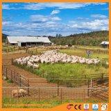 Il tipo rete fissa portatile di iso Australia delle pecore riveste Suppiler di pannelli