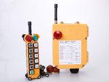 À télécommande sans fil industriel de F24-10s AC/DC 12V 380V pour la double grue de crochet de Gider