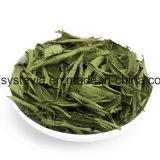 Hersteller Stevioside Sweetner von China
