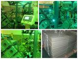 Linea di produzione dell'espulsione dello strato dell'animale domestico macchina con l'iso, certificazione del Ce