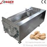 산업 생강 감자 세탁기 청소 당근 세탁기