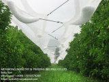 4X200M Virgen PEAD Anti Granizo Net 3x7mm el tamaño del orificio