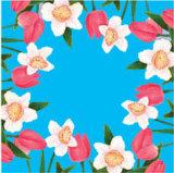 Imprimé Coloré serviette de table 01